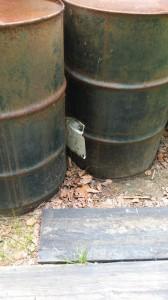 Yellow Jackets under barrels